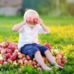 seasonal menus for children in child care